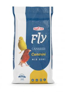 CANARIA – FLY TECHNICAL