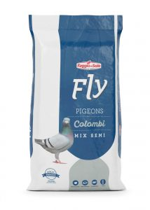 BASIC – FLY COLOMBI