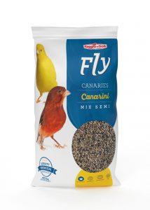 CANARINI – FLY HOBBY