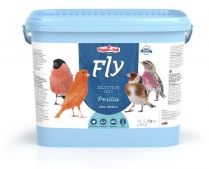 PERILLA – FLY SELECTION SEED