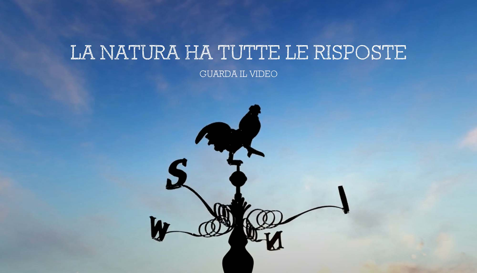 La Natura ha tutte le risposte